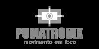Pumatronix